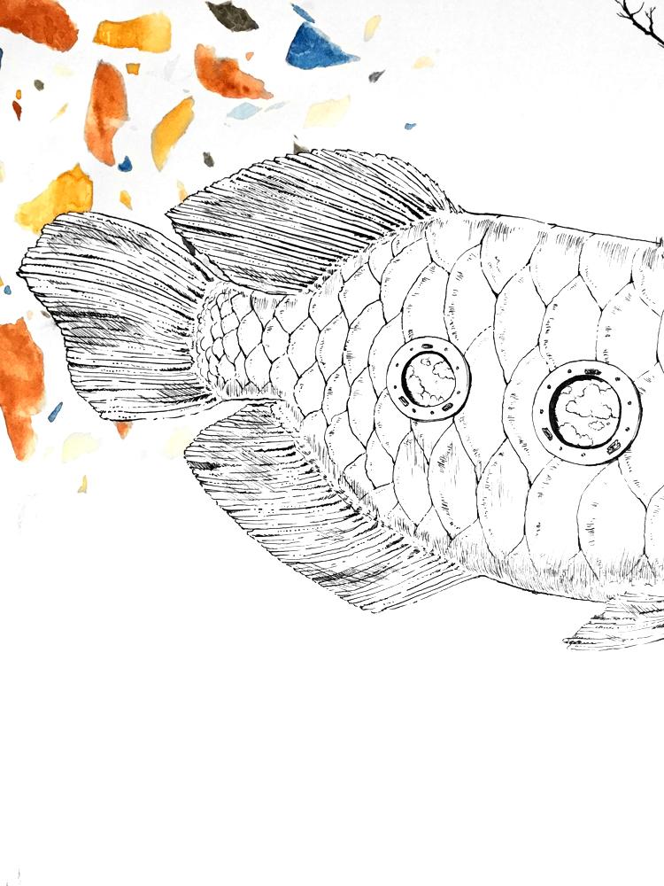 fish_pattern