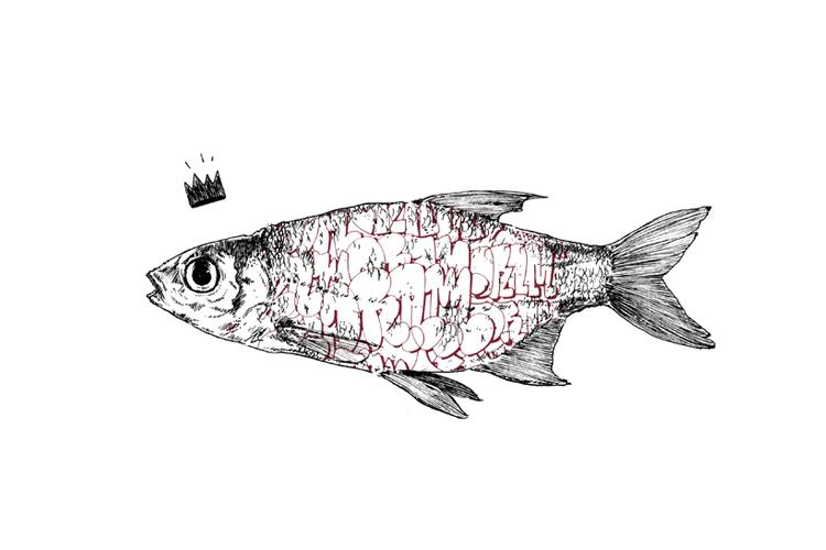 king_fish